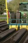 mulch-film-durasoft-actionsmall